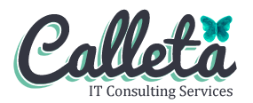 Calleta Consulting LLC